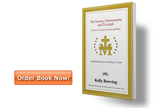Order The Secrets, Chastisement and Triumph Book